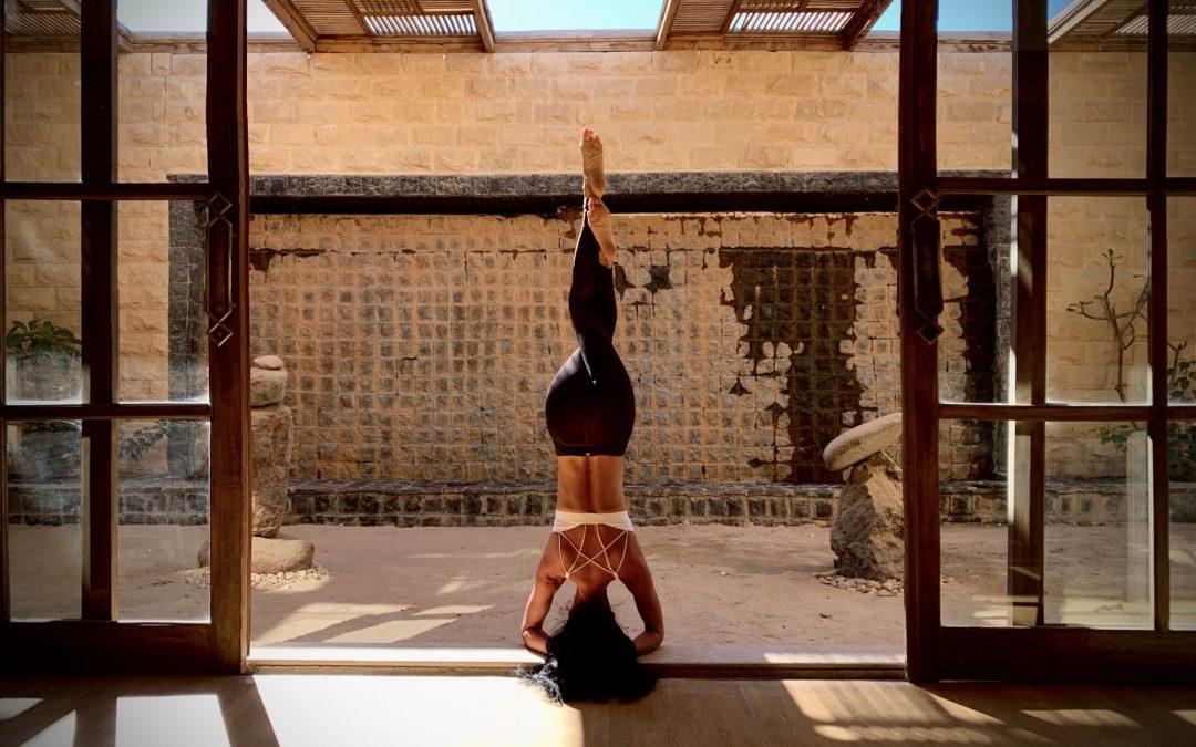 03.-04.07.21 Yoga Anatomie Weiterbildung mit Nicole Willberg
