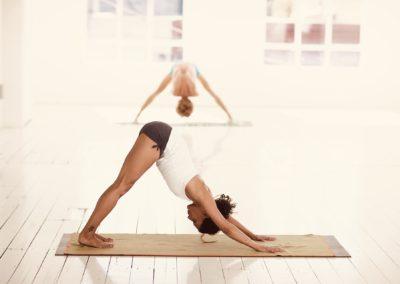 28./29.09.19 Yoga Anatomie–Modul
