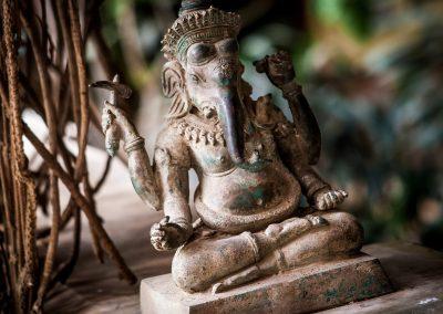 31.01.-10.02.20 Goa. Yoga. Qi Gong