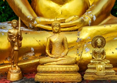 14.07.20 Tibetische Naturheilkunde: Konsultation mit Tibetanischem Mediziner